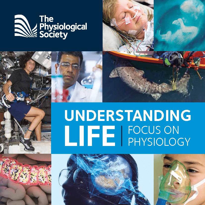 Understanding Life Cover